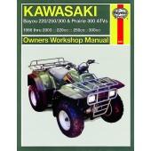 Haynes Kawasaki Bayou/Prarie